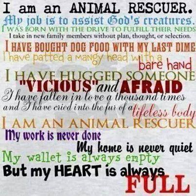 Animal_Rescuer1