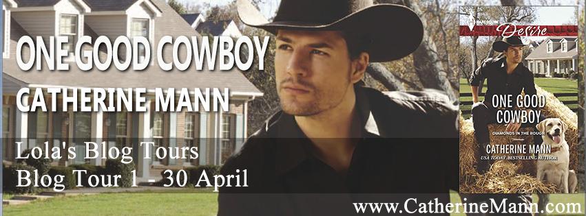 One-Good-Cowboy-banner